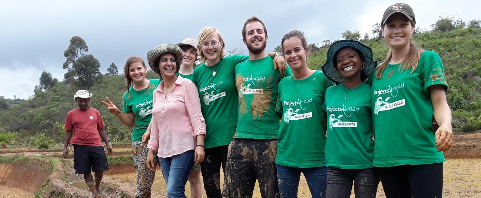 Voluntarios ayudan a plantar arroz durante su viaje grupal.